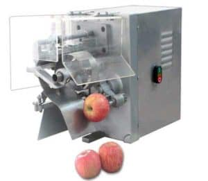 Automatic Apple Peeling and Cutting Machine